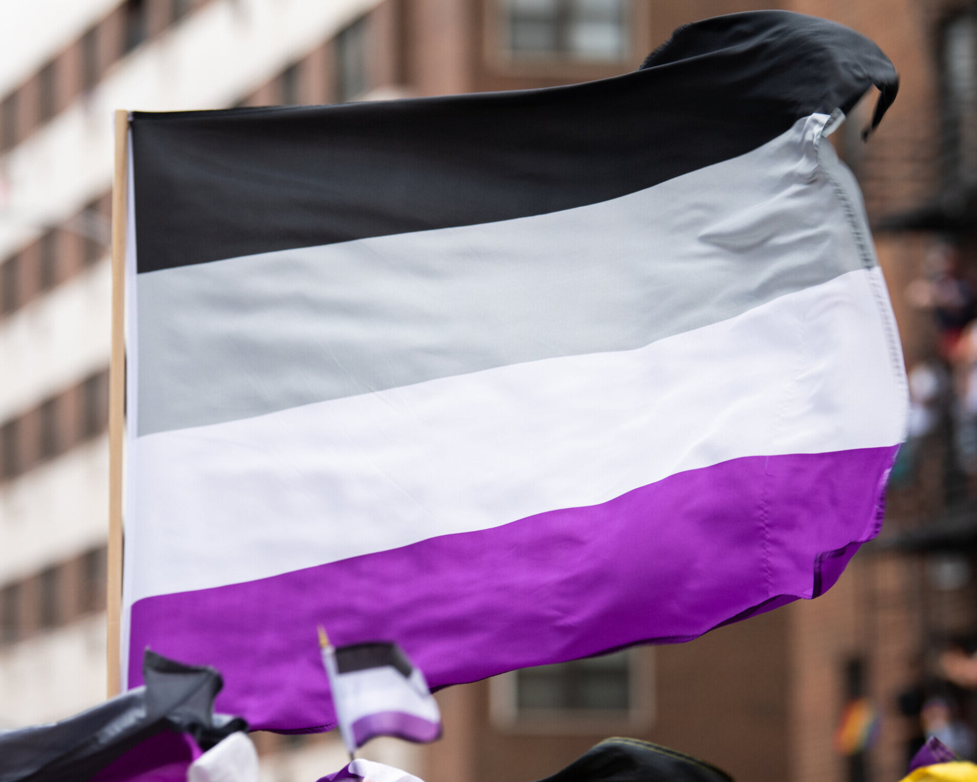 A large asexual flag waving in front of a blurry building.