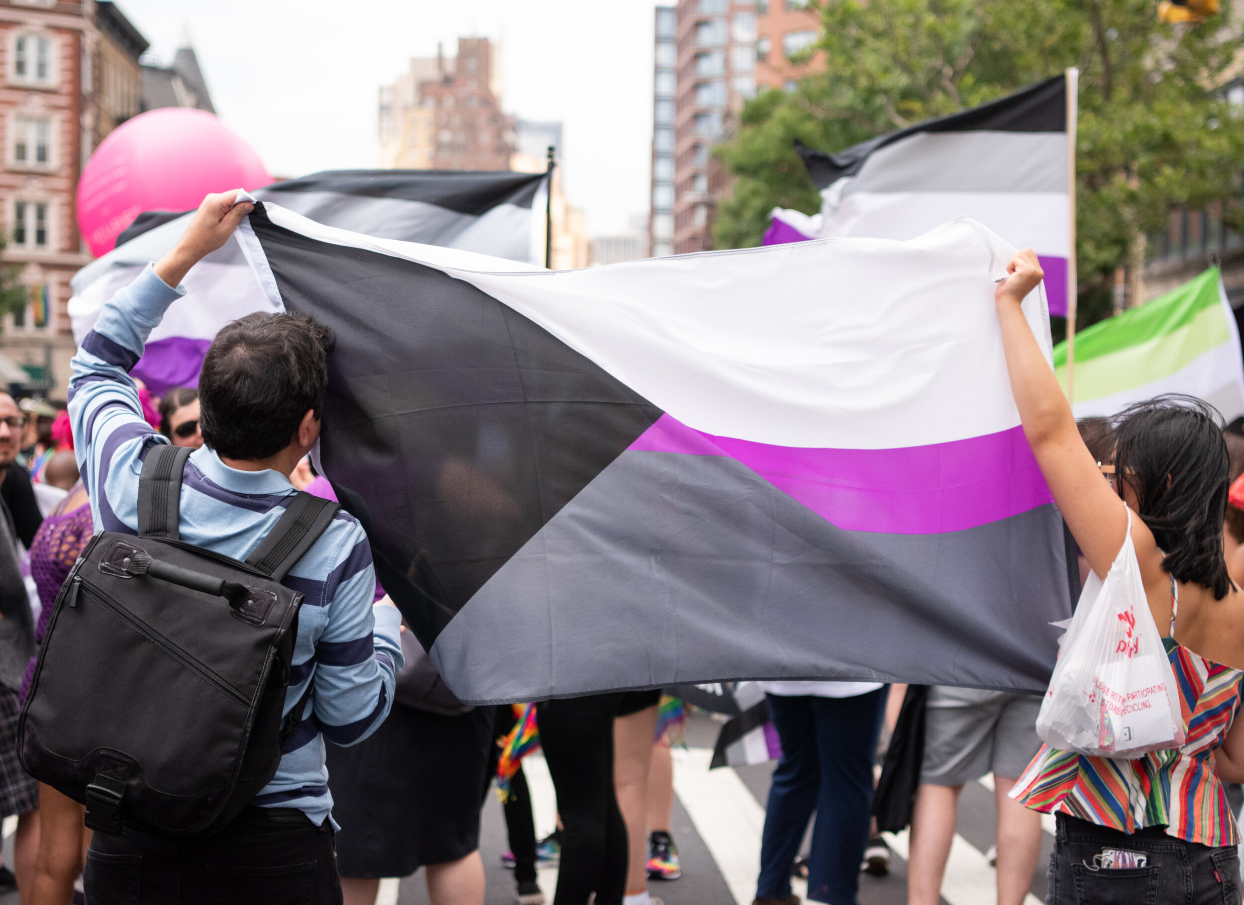 Two brown people holding up a large demisexual flag at a parade. One has short dark hair and the other has shoulder length dark hair.