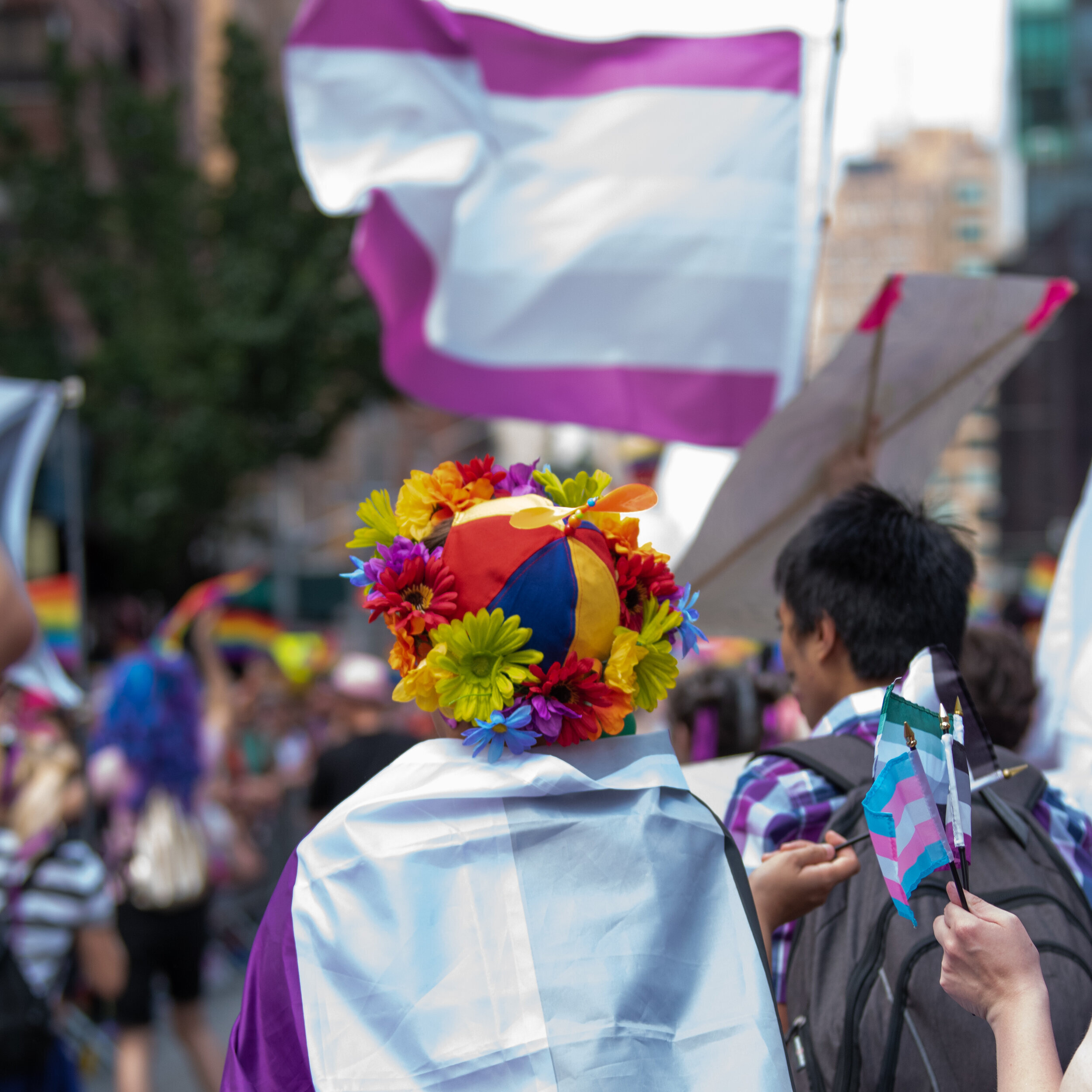 A person with an Ace flag cape and a flower crown. A blurry background shows multiple other people and a large graysexual flag.